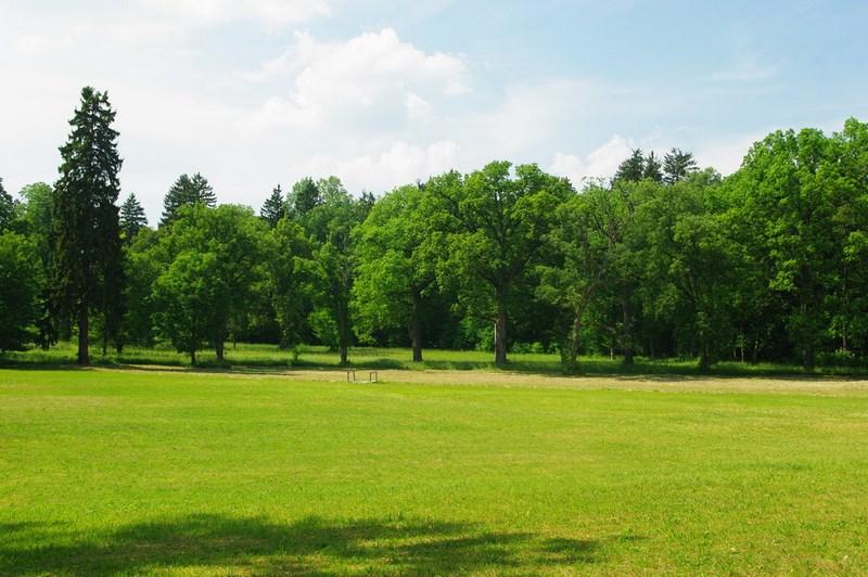Bílé Poličany – zámecký park