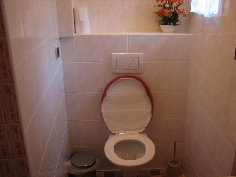 Velký Vřešťov – wc