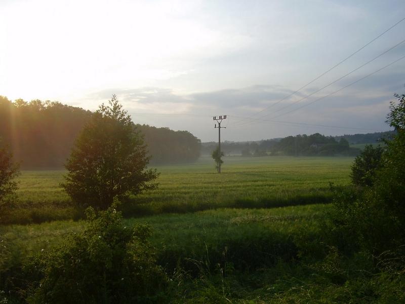 Příroda – foto z okolí
