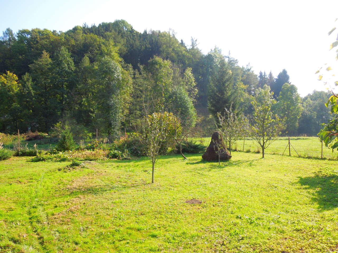Chalupa – Velký Vřešťov, oplocená zahrada za stodolou